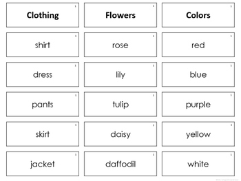 Sort Words by Categories  - a Card Sort Activity