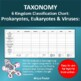 Taxonomy 6 Kingdom Classification Chart: Prokaryotes, Eukaryotes and Viruses