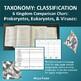 Taxonomy 6 Kingdom Classification Chart: Prokaryotes, Euka