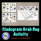 Classification: Cladogram Grab Bag Activity