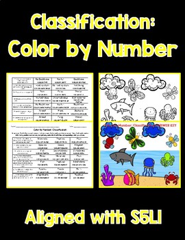 Classification Color By Number