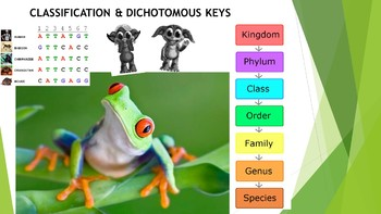 Classification, Dichotomous Key Presentation and Activity
