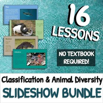 Classification & Diversity of Animals: SLIDESHOW BUNDLE!