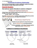 Animals; Classification of Animals - Evolutionary