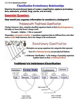 Classification - Evolutionary