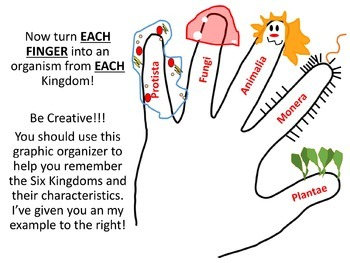 Six Kingdoms of Life PowerPoint and Graphic Organizer