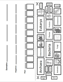 Classification Graphic Organizer - Cut and Paste