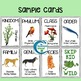Classification Hierarchy Skip-Bio Card Game