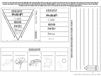 Classification Hierarchy and Kingdoms Reading Comprehension Interactive Notebook