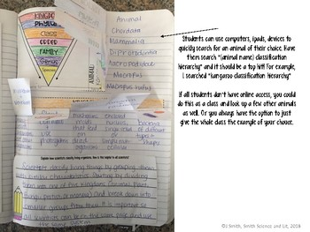 Classification Hierarchy and Kingdoms Reading Passage Interactive Notebook