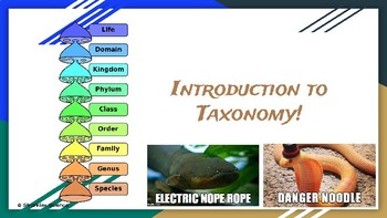 Classification- Intro to Taxonomy Presentation
