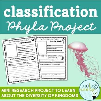 Classification- Diversity Project