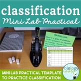 Classification- Mini Lab Practical