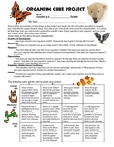Classification Organism Cube Project
