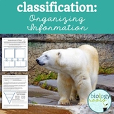 Classification: Organizing Information Freebie
