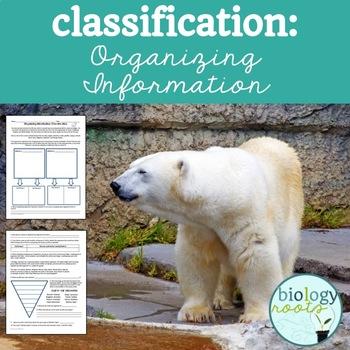Classification: Organizing Information Freebie