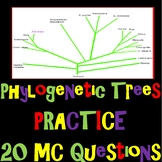 Classification: Phylogenetic Trees