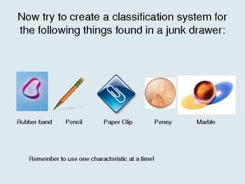 Classification Powerpoint Presentation