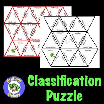 Classification Puzzle
