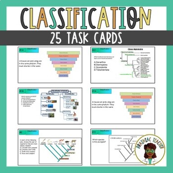 Classification: Taxonomy, Cladogram, Dichotomous Key, Phylogenetic Tree