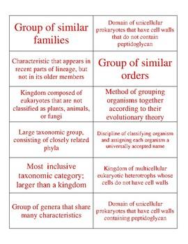 Classification/Taxonomy Sort