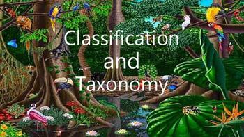 Classification/Taxonomy Unit