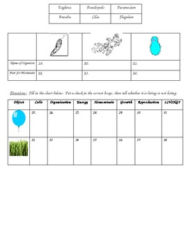 Classification Test (7 divisions, living vs nonliving, protists)