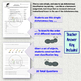 Classification Using a Dichotomous Key Homework or Classwork Activity