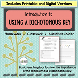 Classification Using a Dichotomous Key Homework or Classwork Activity