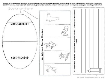 Classification: Vertebrate Animal Classes Read and Apply Interactive Notebook
