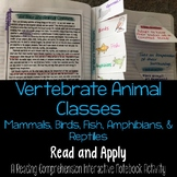 Classification: Vertebrate Animal Classes Read and Apply I
