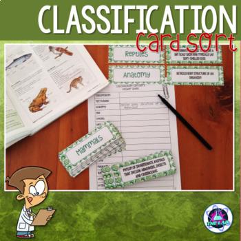 Classification Vocabulary Card Sort