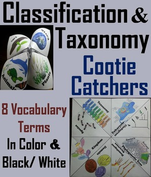 Classification and Taxonomy Activity (Scoot Unit Review Ga