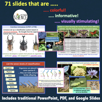 Classification Bundle PowerPoint, Labs, Activities, Task Cards, Tests Bundle