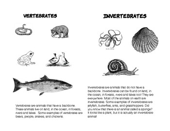 PRINTABLE: Classification of Animals- An ELD Reader