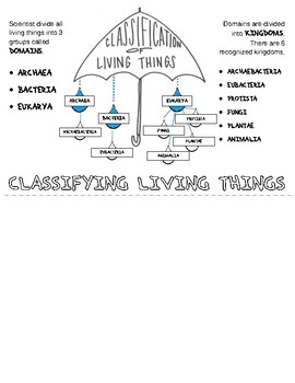 Classification of Life Flip Book