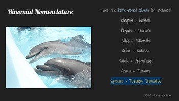 Classification of Living Things: A Life Sciences Slideshow!