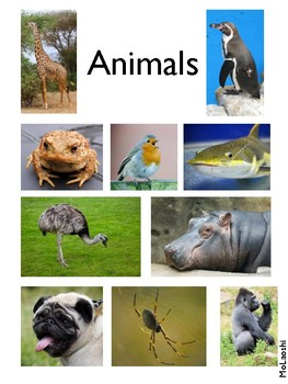 Classification of Living Things: Printable Posters