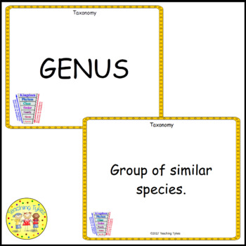 Classification of Living Things Vocabulary Cards