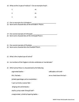 Classification of Living Things - Introduction to the ANIMAL KINGDOM Worksheet