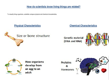 Classification of Living Things (Part of Unit 2 Cells)