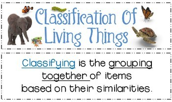 Classification of Living Things Word Wall Visual Vocabulary Terms