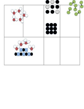 Classification of Matter Sort
