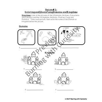 Classification of Organisms Choice Homework