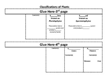 Classification of Plants Interactive Notebook