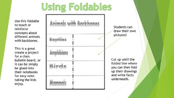Classify Animals Foldable