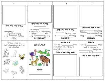 ANIMAL CLASSIFICATION Booklet