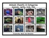 Classify & Categorize Animals (mammals, reptiles, birds, and fish)