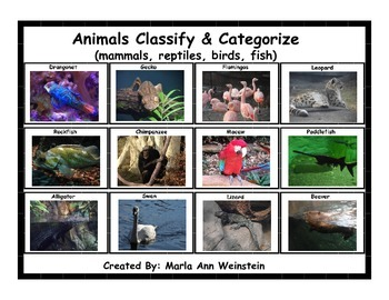 Classify & Categorize Animals (mammals, reptiles, birds, and fish)