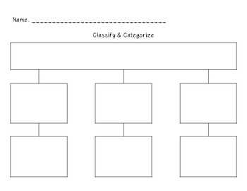 Classify & Categorize Organizer